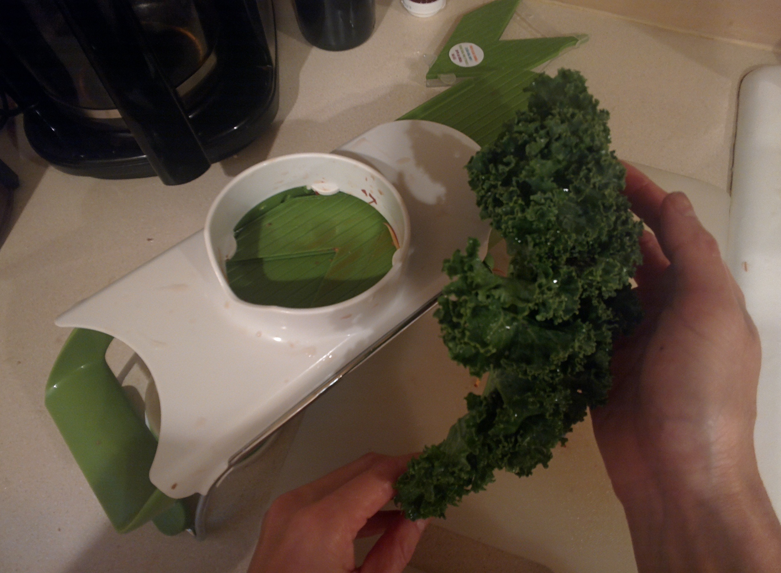 Kale held next to a white and green mandoline from Chef'n, sitting on a kitchen counter, coffee maker in upper left hand corner, sink next to piece of kale