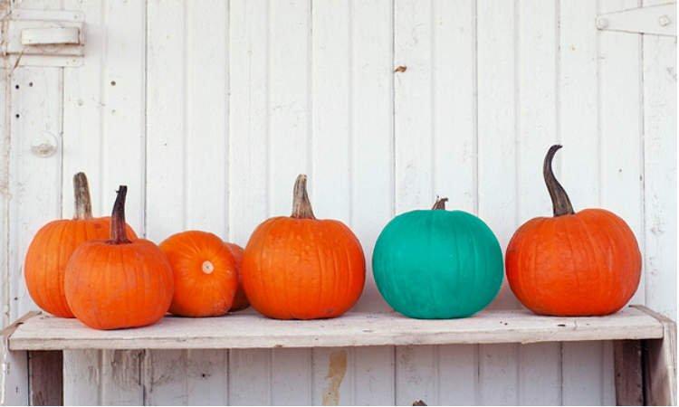 Happy Allergen Free Halloween
